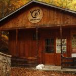 Arcturos Brown Bear Sanctuary