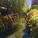 Photo of Lijiang Jun Bo Xuan Boutique Guesthouse