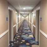Foto de Holiday Inn Express Washington DC N Silver Spring