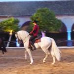 Photo de Caballerizas Reales de Cordoba
