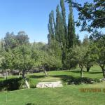 Grounds at the Estancia
