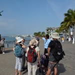Foto de Superior Tours Vallarta - Day Tours