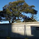 Photo de Centennial Park