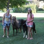 Walk the ponies