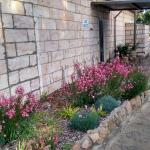 the new flower beds around the amenties