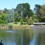 Lake Alexandra Reserve