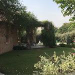 Landscape - Tree of Life Resort & Spa Jaipur Photo