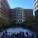The Ice Skating rink