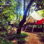 Foto de Dreamsea Surf Glamping Tents