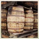 Mount Gay aging casks