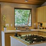 Modern Ranch Cabin kitchen