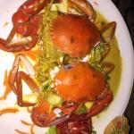BLACK CRAB YELLOW CURRY