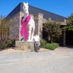PF Chang's Supporting Breast Cancer Research