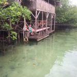 Foto de Urraca Private Island