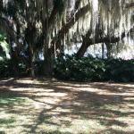 Beautiful grounds.