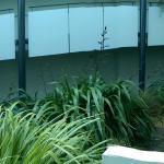 Scenic Suites Queenstown Foto