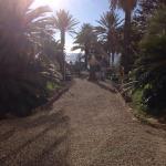 Photo de Hotel Miramare Continental Palace