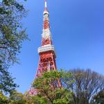 Tokyo Tower, you can see this tower once you enter the hotel ground