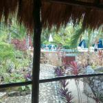 Photo de Villa Tortugas Residence