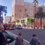 La avenida principal de Hollywood, a una cuadra del hostel