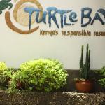 Turtle Bay Beach Club Foto