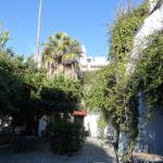 отель и сад