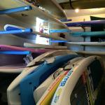 MN Surf Co Foto