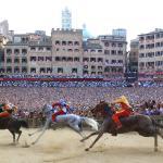 Siena horse race