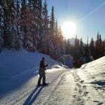 snowshoeing around