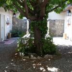 Foto de Hostel Los Troncos