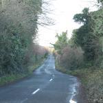 The road to Newgrange Lodge