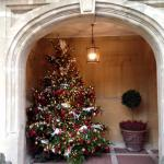 Christmas tree by the door