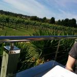 Sitting outside overlooking the vineyard