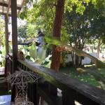 Balcony - Family Hut Pai Image