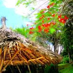 beach hut and flowers