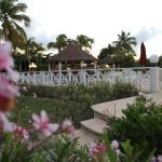 Paradise Cove Resort resmi