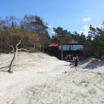 the hotel in dunes