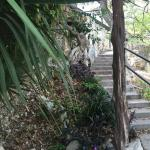 Steps that lead to waterfall & Frio Springs