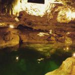 Photo de Cenote San Ignacio