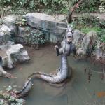 Sishan National Forest Park Foto
