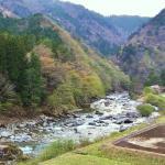 Фотография 1097567