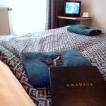 Отель Amadeus