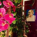Photo of Gandhi