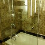 Bathroom shower clean with good water pressure