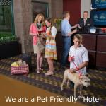 Pet Friendly Hotel