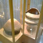 Antropologico Diretor Pestana Museum