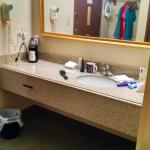 Sink/dressing counter