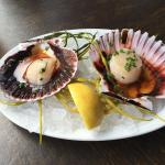 Raw Scallops from Raw Bar