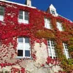 Hotel De Pauw Foto