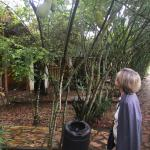 The grounds are lushly landscaped and very well-tend3d.